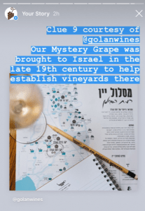 IG Mystery Grape Israeli wine.