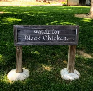 Robert Biale Black Chicken sign